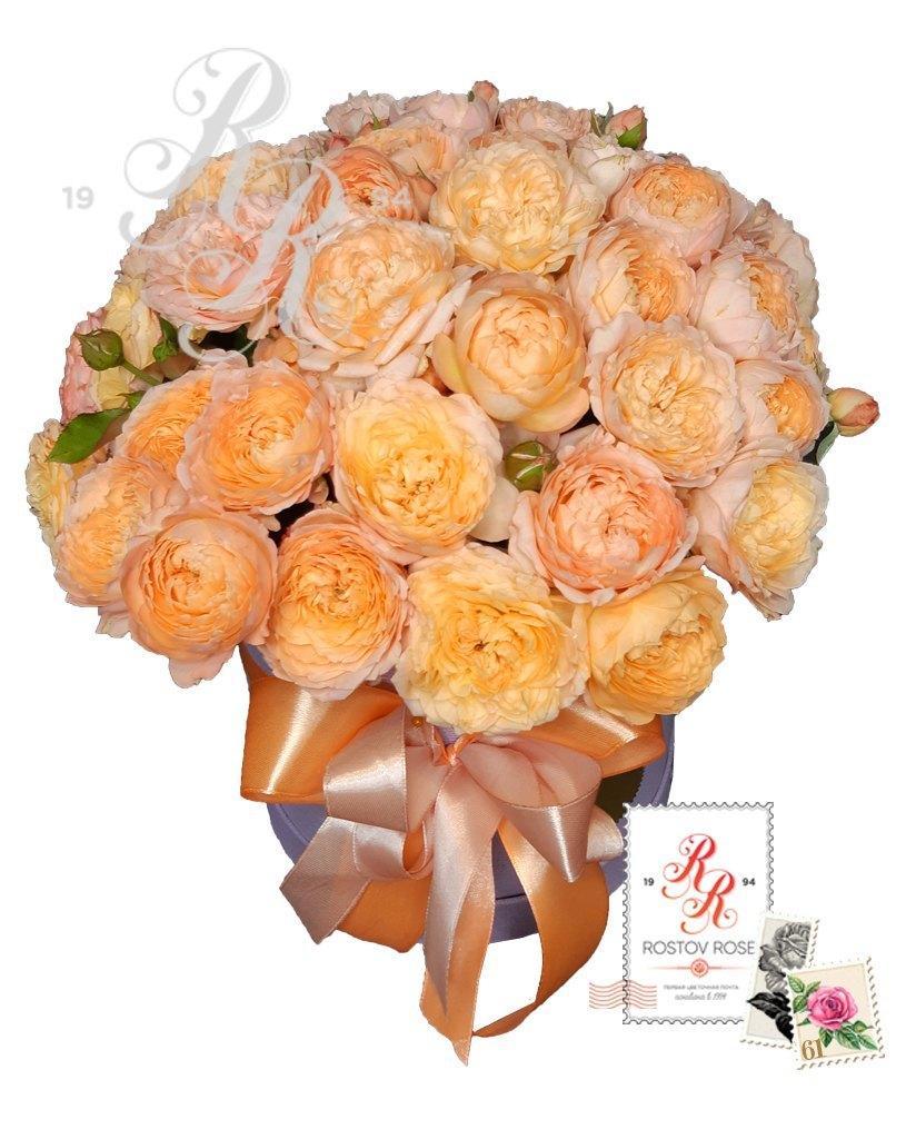 25 роз Джульетта в коробке