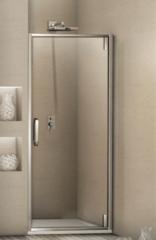 Душевая дверь в нишу WeltWasser WW900 900К1 90 см