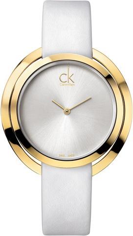 Купить Наручные часы Calvin Klein Aggregate K3U235L6 по доступной цене