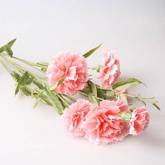 Гвоздика кустовая 9140, pink