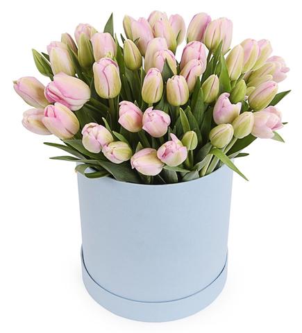 Букет 51 тюльпанов в шляпной коробке сиреневых