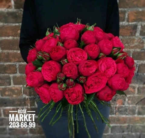 51 роза Ред Пиано #15814
