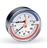 Термоманометр аксиальный Watts F+R818 (бывший TMAX)