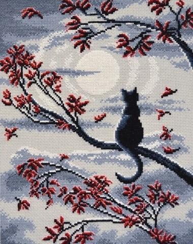 OVEN-865 Лунный кот