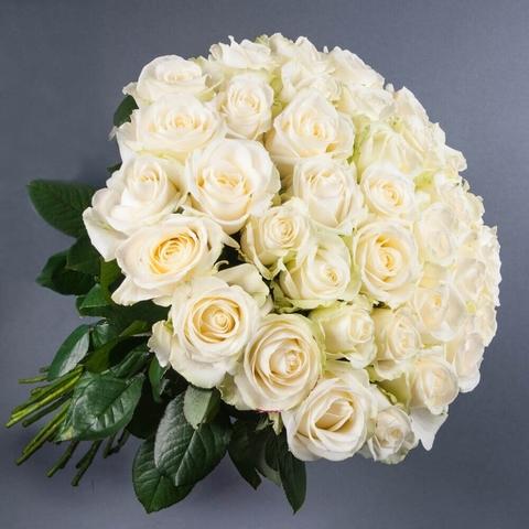 51 белая роза 50 см (BgFlora) #21971