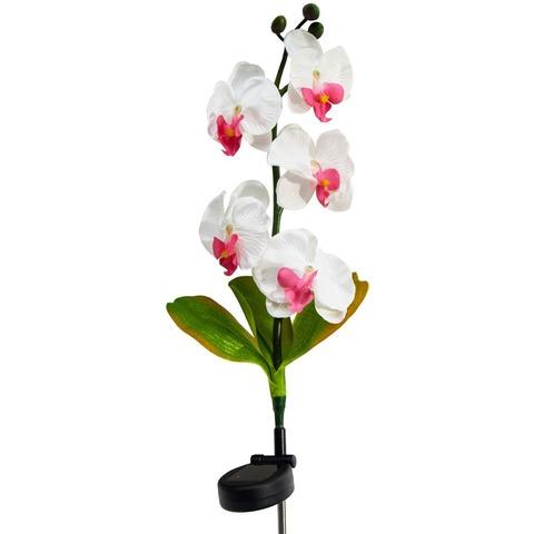 Светильник садово-парковый на солнечной батарее «Орхидея розовая с розовым», 5 LED белый, 70см , PL301 (Feron)