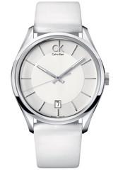 Наручные часы Calvin Klein Masculine K2H21101