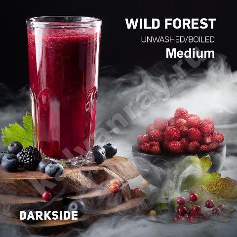 Darkside Medium Wild Forest