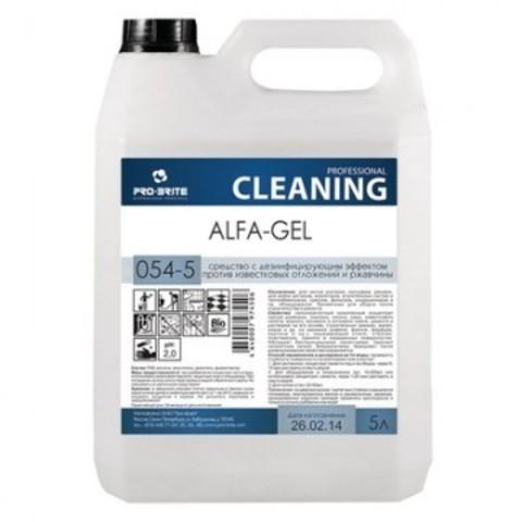 Профессиональная химия Pro-Brite ALFA-GEL 5л (054-5), от налета иржавчины