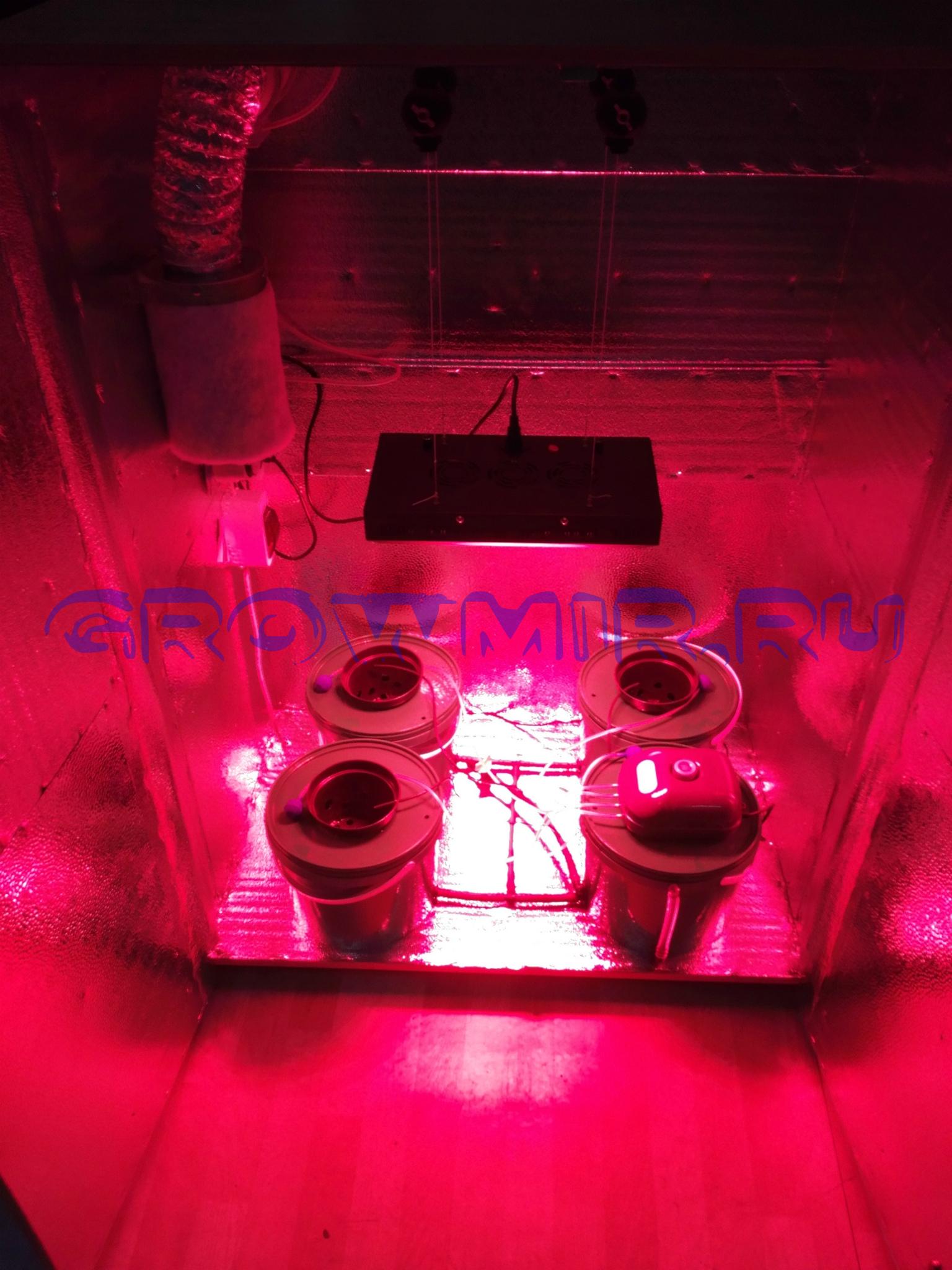 Гроубокс 140х100х60 для выращивания растений с LED светом