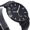 Купить Наручные часы Skagen SKW6053 по доступной цене