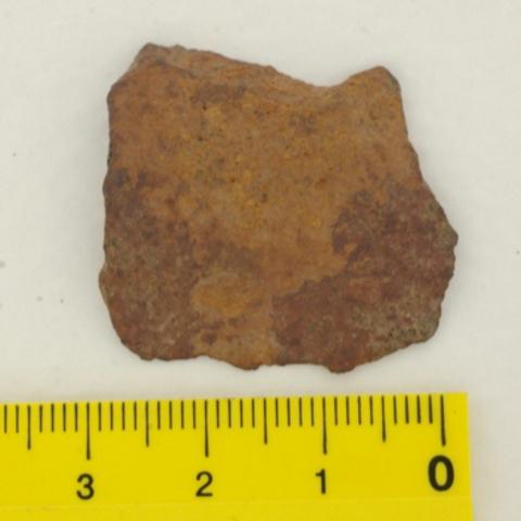 Каменный метеорит Царев