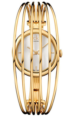 Купить Наручные часы Calvin Klein Fly K9923620 по доступной цене