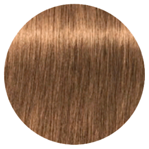 Schwarzkopf Igora Royal High Power Browns B-4 (Коричневый бежевый) - Краска для волос