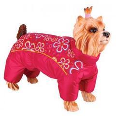 Комбинезон для собак, DEZZIE, мальтийская болонка - красный с цветами, девочка, болонья