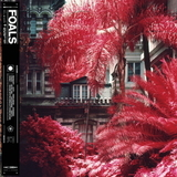 Foals / Everything Not Saved Will Be Lost Part 1 (LP)
