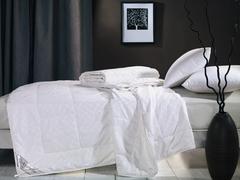 Одеяло шелковое 172х205 Asabella CS-2