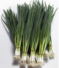Тотем семена лука на перо (Sakata / Саката)