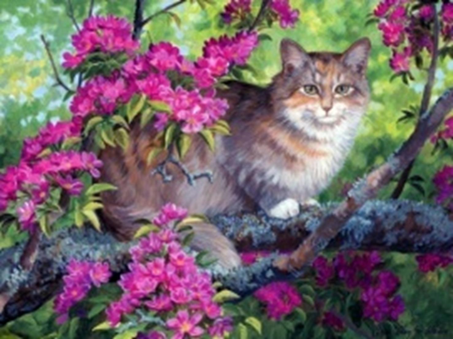 Картина раскраска по номерам 30x40 Котик в цветах (арт ...