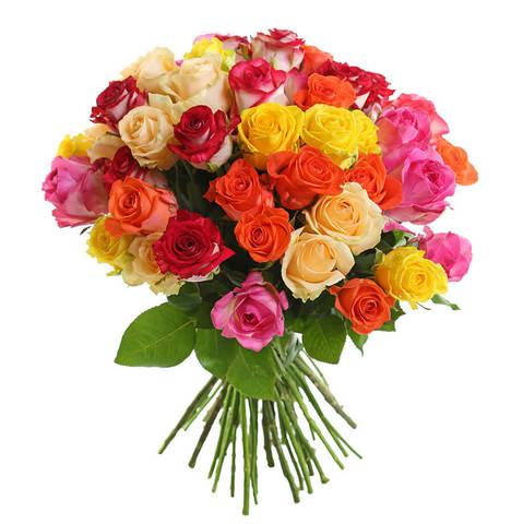 51 роза 60 см #1446