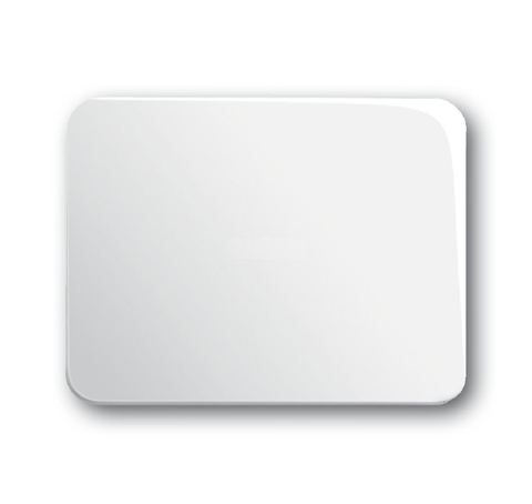 Выключатель одноклавишный. Цвет Белый глянцевый. ABB (АББ). Alpha (Альфа). 1012-0-2131+1751-0-3078