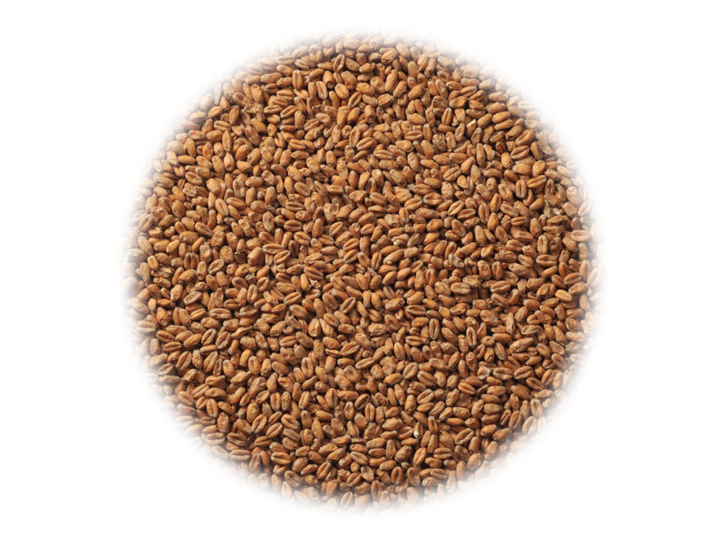 Солод Солод Dingemans Wheat MD (Пшеничный) 9227_P_1457722051631.jpg