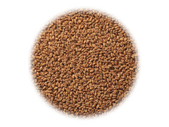 Солод Dingemans Wheat MD (Пшеничный)