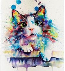 Картина раскраска по номерам 40x50 Разноцветная кошка ...