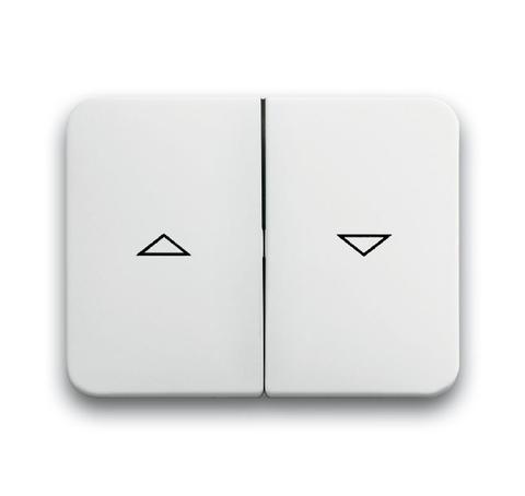 Выключатель двухклавишный управления жалюзи/рольставни с фиксацией 10А 250В Цвет Белый глянцевый. ABB (АББ). Alpha (Альфа). 1012-0-2197+1751-0-2128