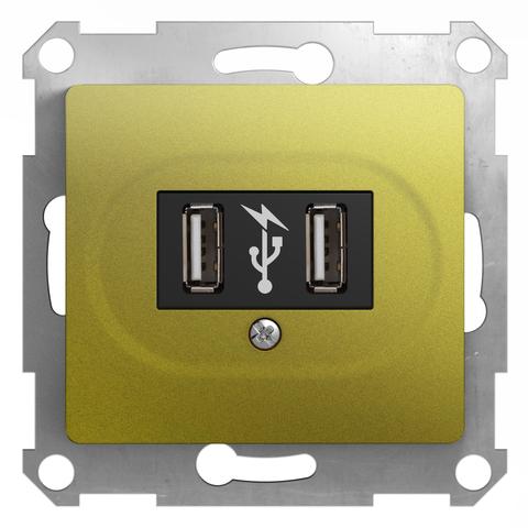 USB Розетка, 5В/1400 mA, 2 x 5 В/700 mA. Цвет Фисташковый. Schneider Electric Glossa. GSL001032