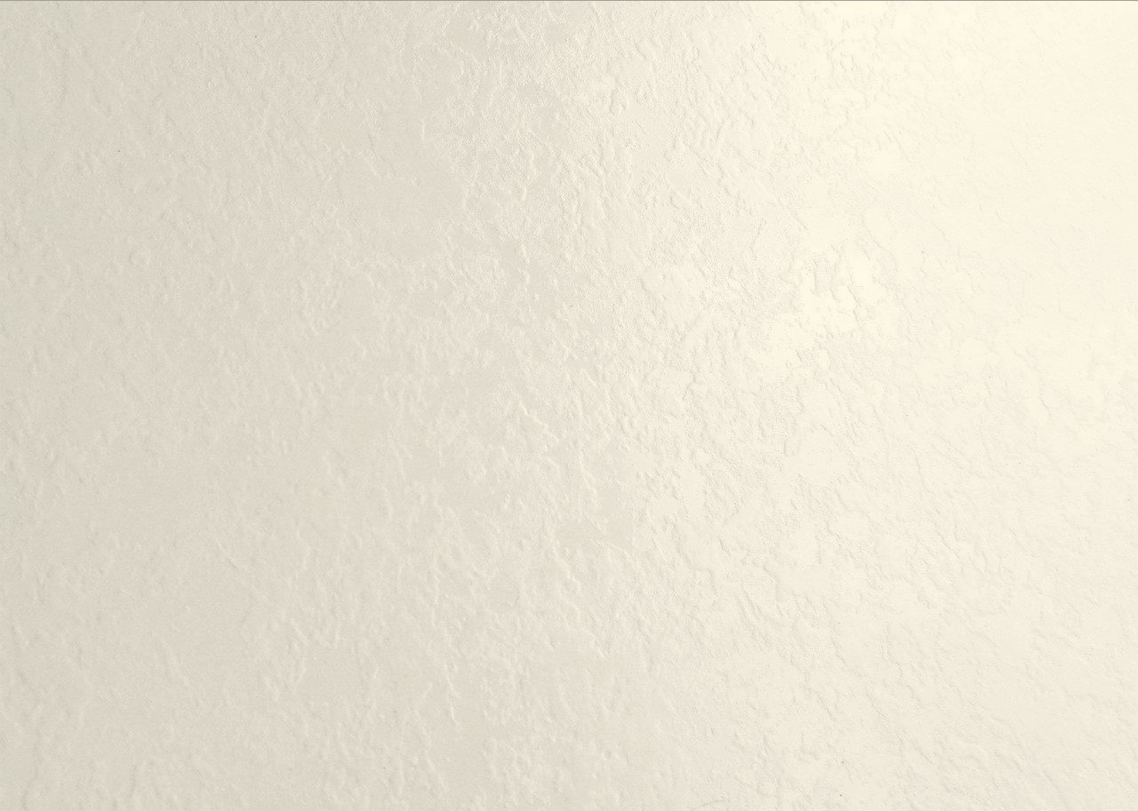 21171 POLAR WHITE