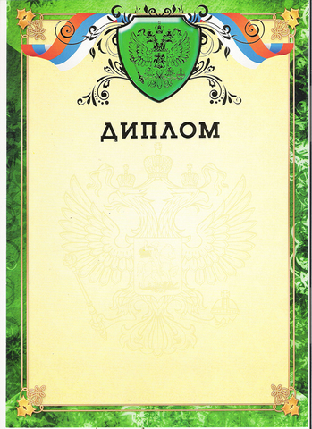 Диплом (с гербом и фольгой)