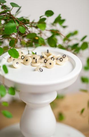Пуговицы из растительной