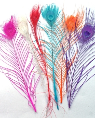 Перья павлина  декоративные окрашенные БРАК! (выбрать цвет)