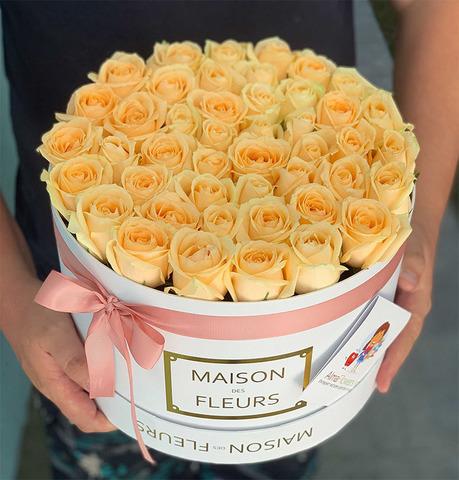 45 кремовых роз в белой подарочной коробке