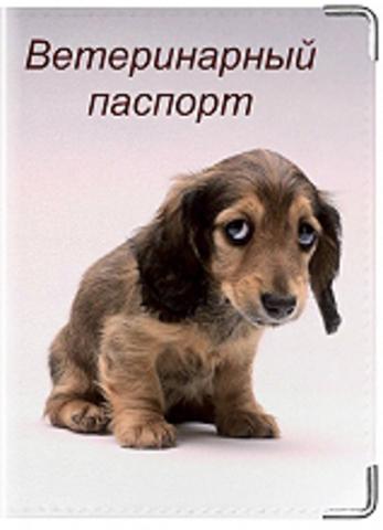 """Обложка для ветеринарного паспорта """"Ветеринарный паспорт"""" (4)"""