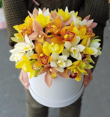 Коробка орхидеи микс