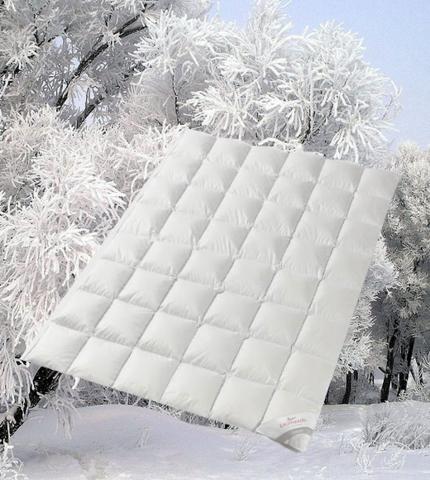 Одеяло пуховое всесезонное 200х220 Kauffmann Legend 650