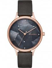 Наручные часы Skagen SKW2390