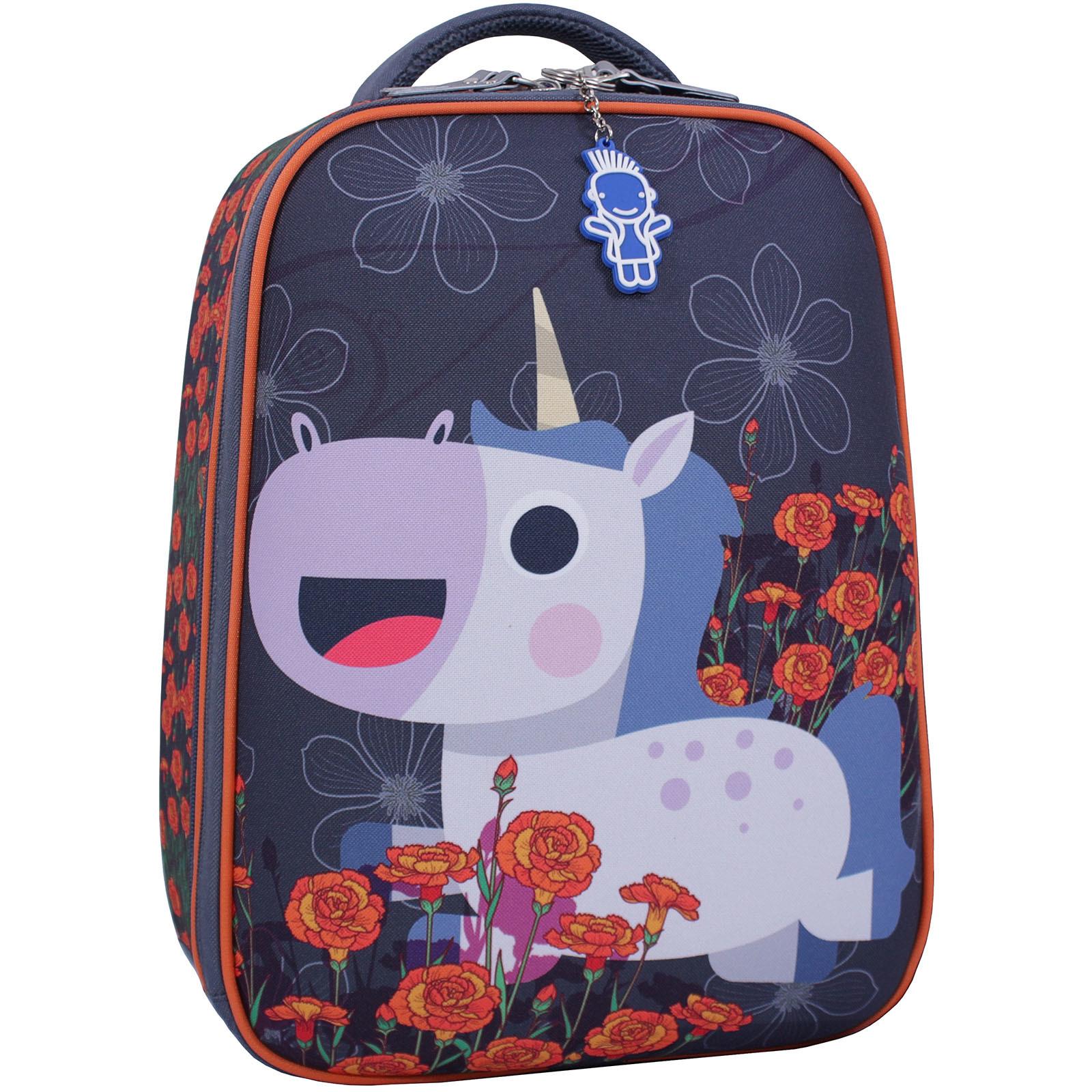 Школьные рюкзаки Рюкзак Bagland Turtle 17 л. сiрий 499 (0013466) IMG_2355_суб.499_.JPG