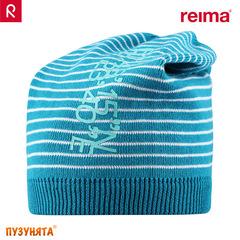 Шапочка Reima Scoria 528387-7860
