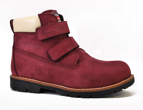Ботинки демисезонные Minicolor 750-2441
