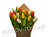 Мини тюльпаны микс