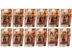 WWE Basic Figure Series 25A