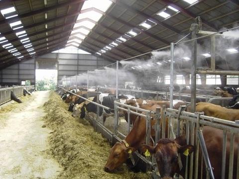 Система увлажнения ферм туманом