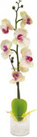Декоративный светильник «Орхидея», белые цветы, PL307 (Feron)