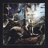 Earl Sweatshirt / Feet Of Clay (Limited Edition)(12' Vinyl EP)