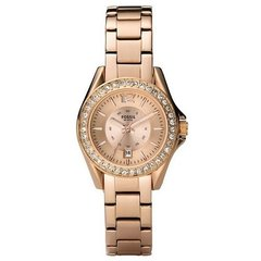 Наручные часы Fossil ES2889