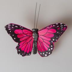 Бабочка 489690