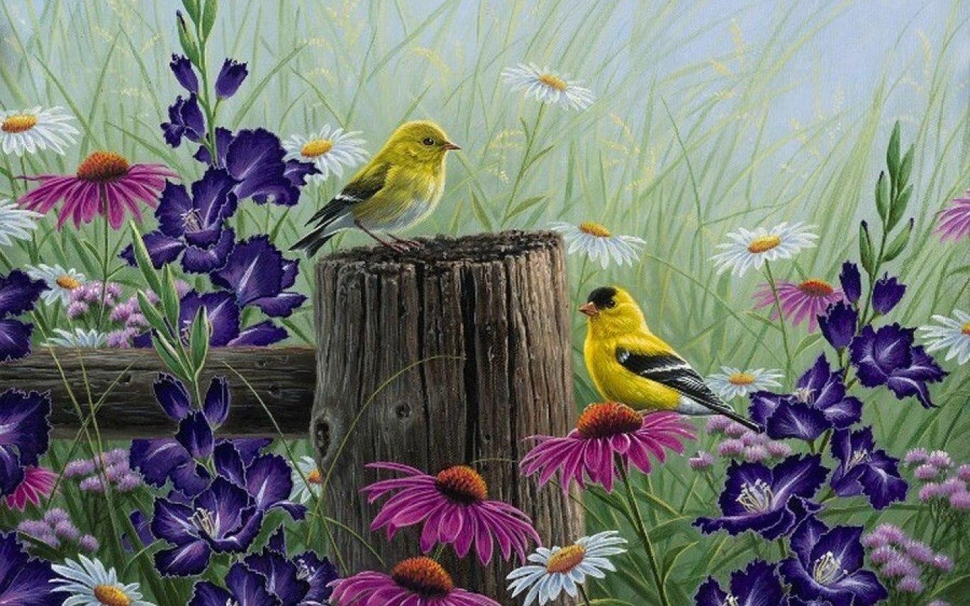 Картина раскраска по номерам 30x40 Птицы на деревянном ...